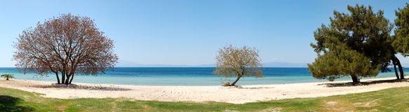 Panorama of beach at the luxury hotel Stock Images