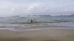 Panorama of the beach of the tropical resort, Bali, Indonesia. Panorama of the beach of the tropical resort, Bali, Indonesia stock footage
