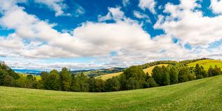 Panorama of beautiful autumn countryside. Forest row of trees on the grassy meadow. gorgeous sky above the distant rolling hills. wonderful september day for a Stock Photo
