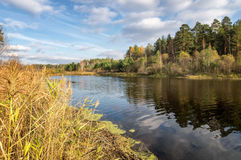 Panorama of beautiful autumn landscape in a forest with a lake, Russia, Ural Stock Images