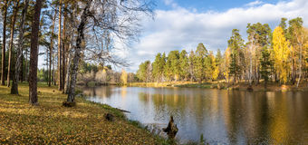 Panorama of beautiful autumn landscape in a forest with a lake, Russia, Ural Royalty Free Stock Image