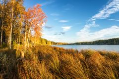 Panorama of beautiful autumn landscape with lake and forest on the Bank of Russia, the Urals stock images