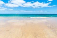 Panorama of beautiful beach and tropical sea of Lanzarote. Canaries.  stock photos