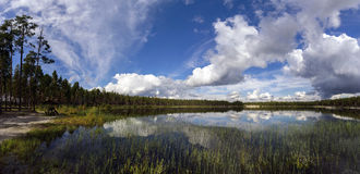 Panorama.Beautiful clouds over the forest lake. Stock Photography