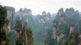 Zhangjiajie Mountains With Stone Pillars Rock Formations Covered Tropical Forest. Panorama of beautiful high stone pillars and rock formations covered with green stock video