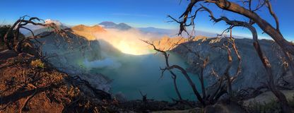 Kawah Ijen at Sunrise. Panorama beautiful landscape with dry tree branch view of Kawah Ijen at Sunrise. The most famous tourist attraction in Indonesia royalty free stock photos