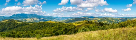 Grassy meadows and forested hills in early autumn. Panorama of a beautiful landscape. grassy meadows and forested hills in early autumn. mountain ridge in the Royalty Free Stock Photo
