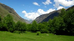 Panorama of beautiful mountain landscape, trees, blue sky Royalty Free Stock Image