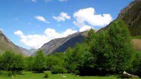 Panorama of beautiful mountain landscape, trees, blue sky Stock Photos