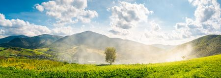 Panorama of beautiful mountainous countryside. Tree on the hill side in smoke from fire in the valley. wonderful bright autumn landscape with gorgeous Royalty Free Stock Photo