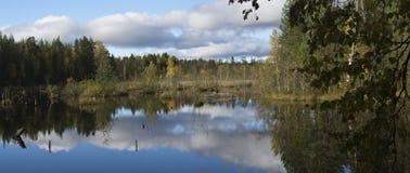 Panorama of beautiful swamp in taiga stock photos