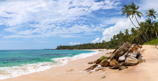Panorama of beautiful tropical beach in Sri Lanka Royalty Free Stock Photography
