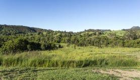 Sunshine Coast Hinterland Royalty Free Stock Photography