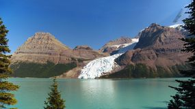 Berg Glacier and Lake in Afternoon Light, Mount Robson Provincial Park. Panorama of Berg Glacier flowing into Berg Lake between Mount Robson, the highest Royalty Free Stock Images