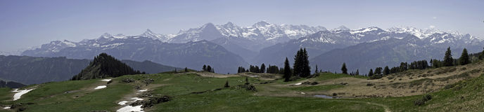 Panorama of Bernese Alps, Niederhorn, Switzerland Royalty Free Stock Images