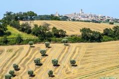 Panorama- beskåda av Potenza Picena Arkivbilder