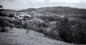 Panorama in bianco e nero della natura fotografie stock libere da diritti