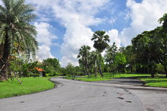 Panorama of big city park. Public Park was a joint effort between the private and public sectors at Bangkok Thailand Stock Photo