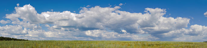 Panorama of big clouds in a sky. nature backgrounds Stock Images
