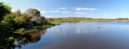 Panorama of  Big Swamp Bunbury west Australia Royalty Free Stock Images