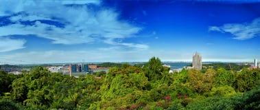 Panorama bij Onderstel Faber Stock Afbeelding