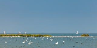 Panorama- bild av IJsselmeer sjön i Nederländerna Arkivbilder