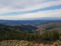 Panorama black forest Royalty Free Stock Photography