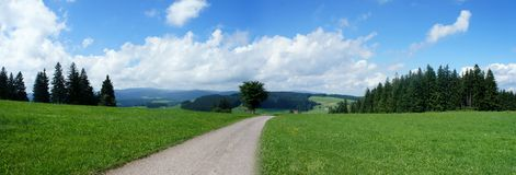 Panorama of the Black Forest Stock Image