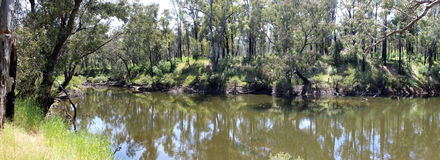 Panorama of Blackwood River West Australia Stock Photo