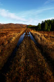 Panorama Bluestack góry w Donegal Irlandia z jeziorem w przodzie Zdjęcie Royalty Free
