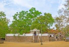 Panorama Bodhi drzewa świątynia Fotografia Stock