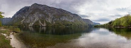 Panorama of Bohinj lake Royalty Free Stock Photo