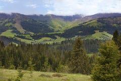 Panorama bonito das montanhas Carpathian no verão na perspectiva das árvores coníferas altas, do céu azul e do whit brilhante Fotografia de Stock