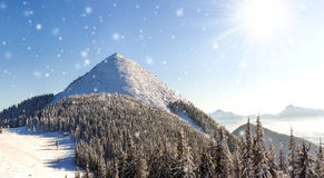 Panorama bonito do inverno com neve de queda fresca Paisagem Foto de Stock Royalty Free