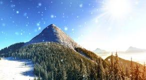 Panorama bonito do inverno com neve de queda fresca Sagacidade da paisagem Fotos de Stock
