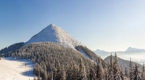 Panorama bonito do inverno com neve fresca Paisagem com abeto vermelho Foto de Stock