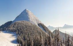 Panorama bonito do inverno com neve fresca Paisagem com abeto vermelho Imagem de Stock