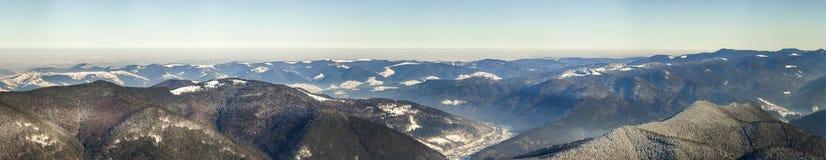 Panorama bonito do inverno com neve fresca Paisagem com abeto vermelho Imagens de Stock Royalty Free