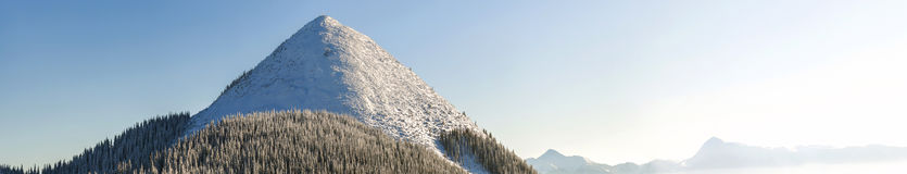 Panorama bonito do inverno com neve fresca Paisagem com abeto vermelho Foto de Stock Royalty Free