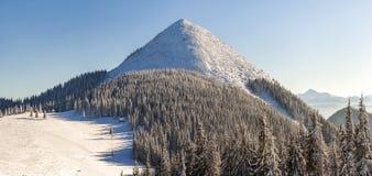 Panorama bonito do inverno com neve fresca Paisagem com abeto vermelho Imagens de Stock