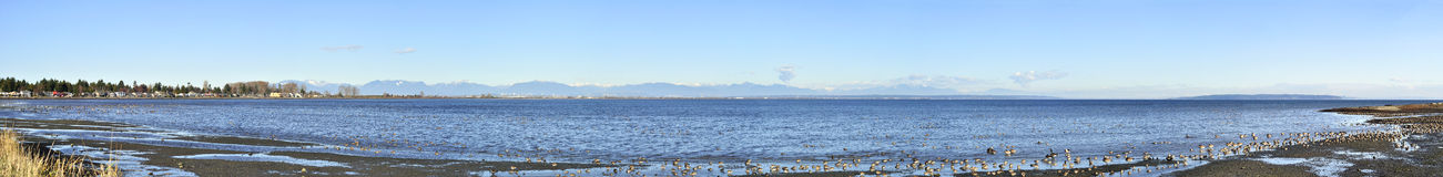 Panorama of Boundary Bay Royalty Free Stock Image