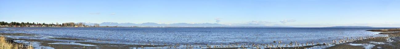 Panorama of Boundary Bay Royalty Free Stock Image