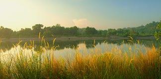 Panorama brumeux de matin Photographie stock libre de droits