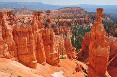 Panorama of Bryce Canyon Utah, USA Royalty Free Stock Photography