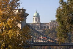 Panorama of Buda Castle and Chain River Bridge. Buda Castle and the Chain Bridge as ween from the Pest side of the Danube in Budapest with colorful foliage Royalty Free Stock Images