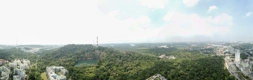 Panorama of Bukit Timah Nature Reserve royalty free stock images