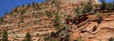 Panorama, camadas atuais da cruz do arenito vermelho Fotografia de Stock