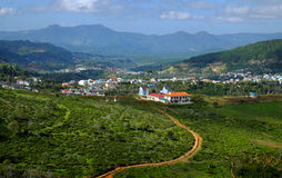 Panorama, campo de Dalat, Vietnam, colina, montaña Imagen de archivo