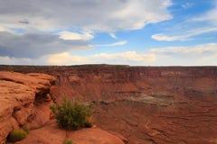Canyonlands National Park panorama Royalty Free Stock Photos