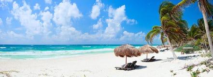 Panorama caraibico della spiaggia Fotografie Stock Libere da Diritti